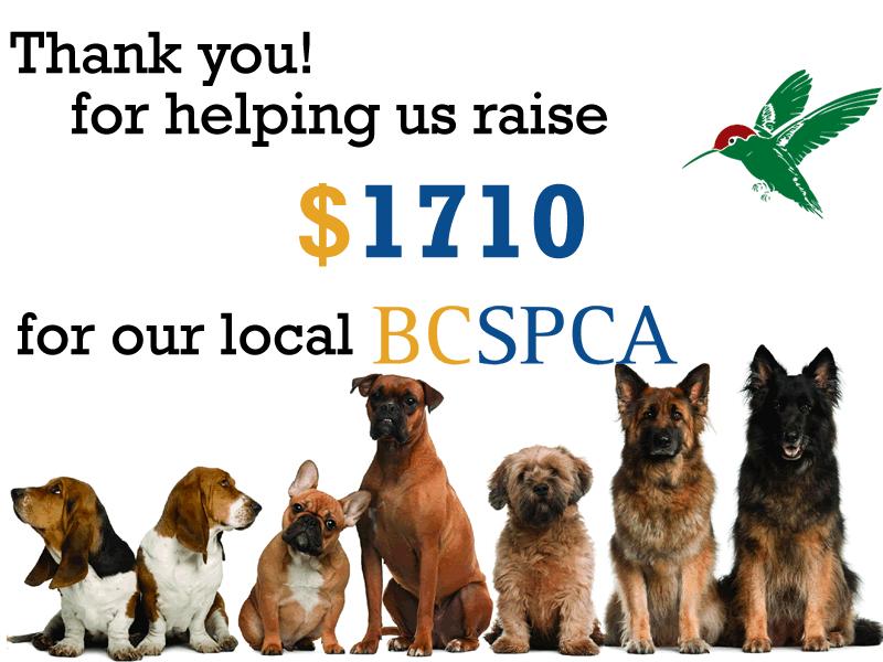 Sechelt Plumbing Raises money for the local BC SPCA